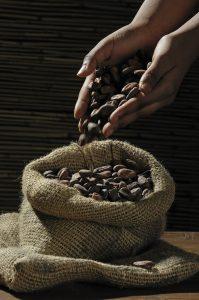 comment-est-fabriquer-le-chocolat